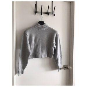 Aritzia Sweater (Brand New) size XS